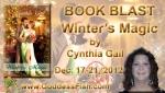 BBT Winter's Magic Banner copy