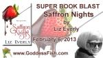 SBB Saffron Nights Banner